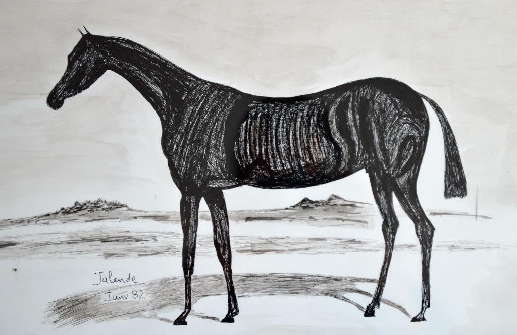 etude-de-cheval
